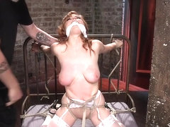 Busty in stockings anal toyed bdsm