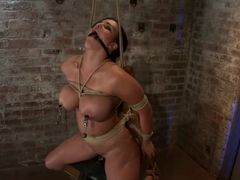 Bound in a chair with a vibrator perfectly stuck on her clitLet's just watch her suffer and cum