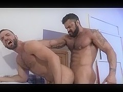 Muscular gay bears fucking hard on the bed