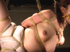 Marica Hase in Predator Games - A HogTied Bdsm Fantasy Feature Movie Starring Marica Hase - HogTied