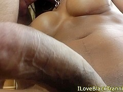 Busty ebony tgirls bareback fun with whiteguy