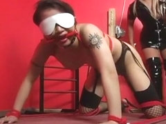 Sexy bondage bitches with anal pleasures