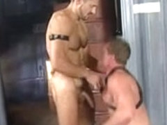 Muscled Gay Hunks Unleashing Their Wild Gay Urge And Fucking