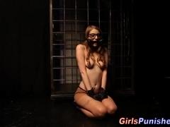 Spex ### on leash eats