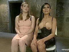 Bound and Switch Two Girls One Cock and One Pussy
