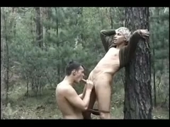 up in the woods 2