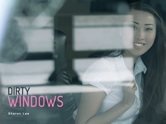 Sharon Lee in Dirty Windows - OfficeObsession