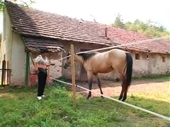 Human Ponies three